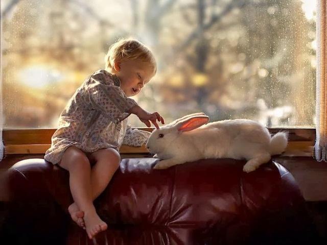 маленьких детей с животными