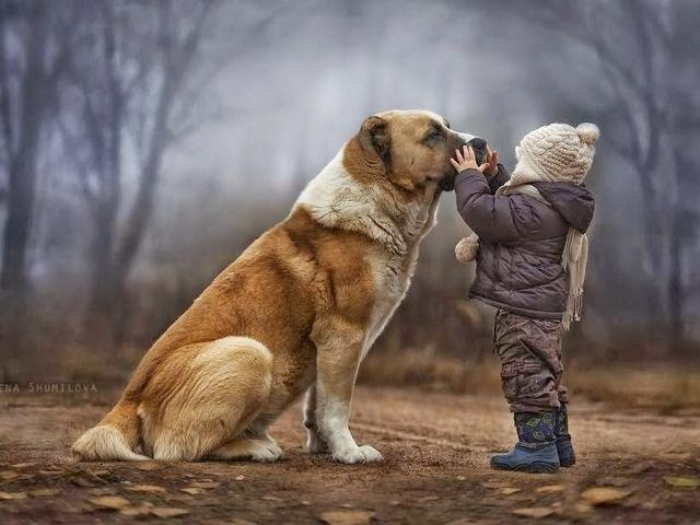 с животными для детей