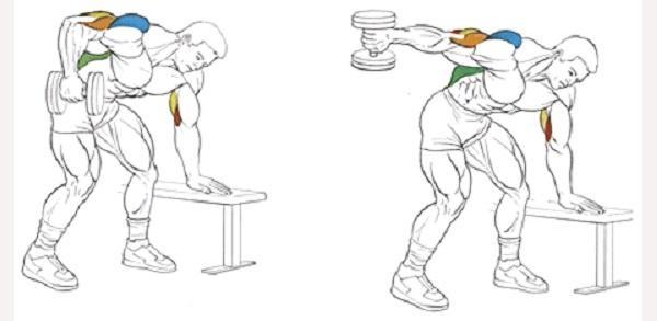 Упражнения с гантелями в домашних условиях 6