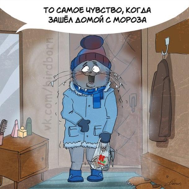 Смешные картинки в зимой