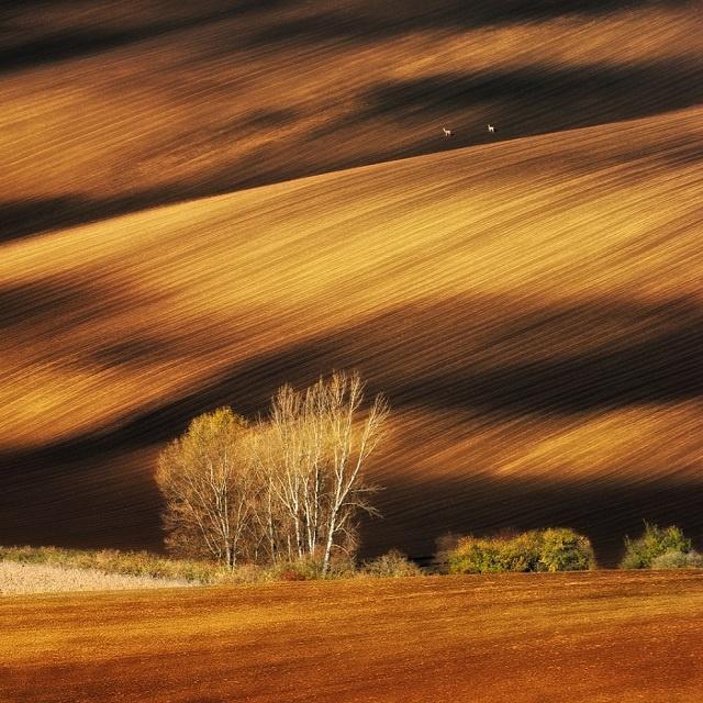 Картинки природи для фотошопа
