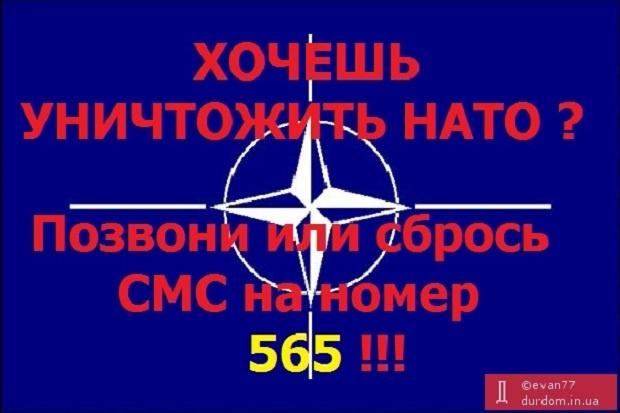 США могут разместить тяжелое вооружение в Восточной Европе из-за агрессии РФ, - The New York Times - Цензор.НЕТ 5579