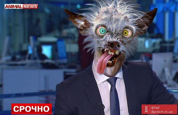 Путин не намерен инициировать отмену санкций, - Песков - Цензор.НЕТ 2182