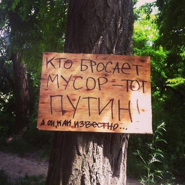 Прикольные картинки про лес с надписями, открытки для