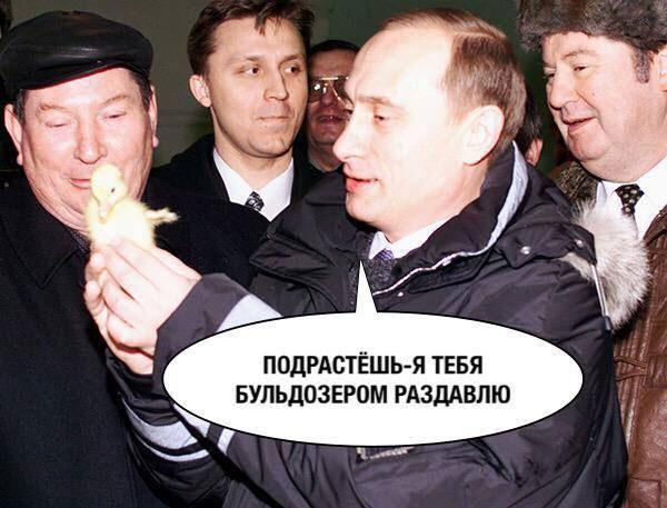 Вслед за Путиным в оккупированный РФ Крым прибудет Медведев - Цензор.НЕТ 3517