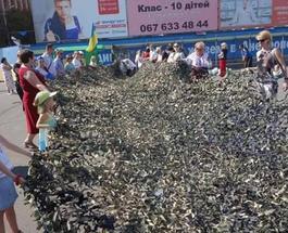 Волонтеры из Луганска в день своего города помогали солдатам АТО