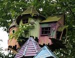 Птичья деревня