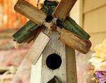 Птичья мельница