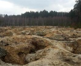 Новости в фотографиях: во что превратили лес нелегальные копатели янтаря в Ровенской области