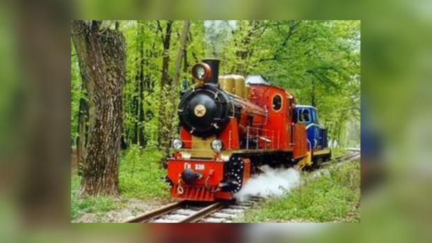 Как и в прежние годы покатились вагончики по Сырецкому парку