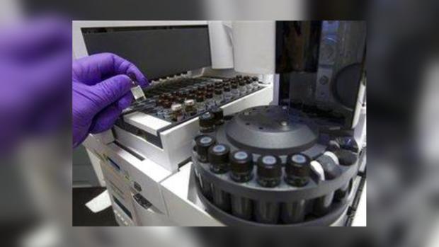 Ученые собираются программировать клетки