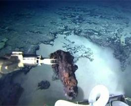 В Бразилии ученые нашли затонувшую Атлантиду