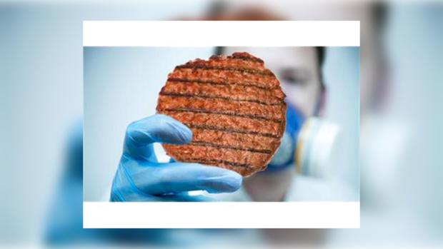 Ученые создали «мясо в пробирке»