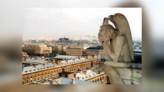 Посетители главного собора Парижа стали свидетелями самоубийства
