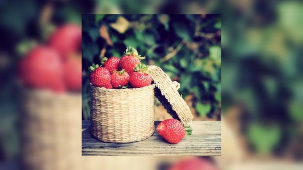 Клубника – не только вкусное, но и очень полезное лакомство для взрослых и детей