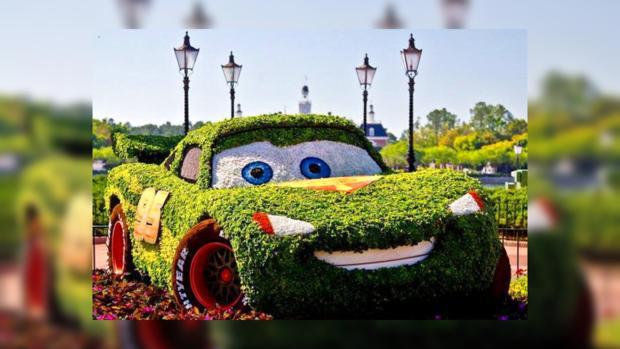 «Зеленые авто» съехались на Певческое поле