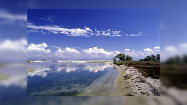 Кинбурнская коса привлекает своими песчаными пляжами и нетронутой природой