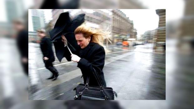 В непогоду на улицу лучше не выходить