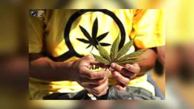 В Киеве потребуют легализовать наркотики