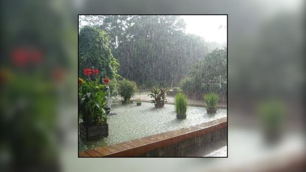 Выходные обещают быть жаркими и дождливыми.