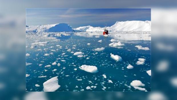 Туристы терпят бедствие на отколовшейся льдине в Арктике
