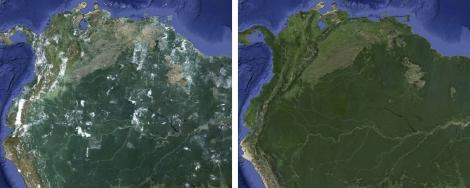 Google развеял облака над планетой. Фото Америки до и после