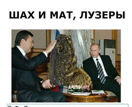 Янукович показал Путину пойманного 900-килограммового бычка