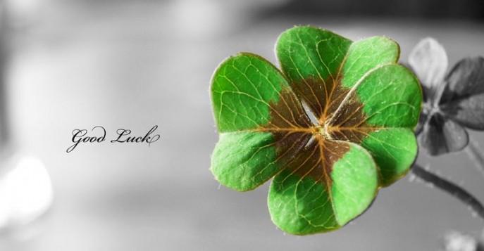 Символ удачи: для счастья, успеха и благополучия.