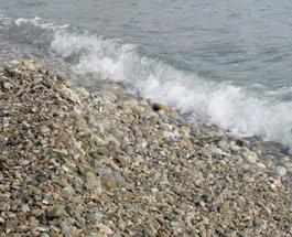 Туристические новости: американцу, собиравшему гальку на турецком пляже, грозит 12 лет тюрьмы