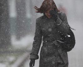 Снегопад: в Украине 28.01.2014 объявили штормовое предупреждение