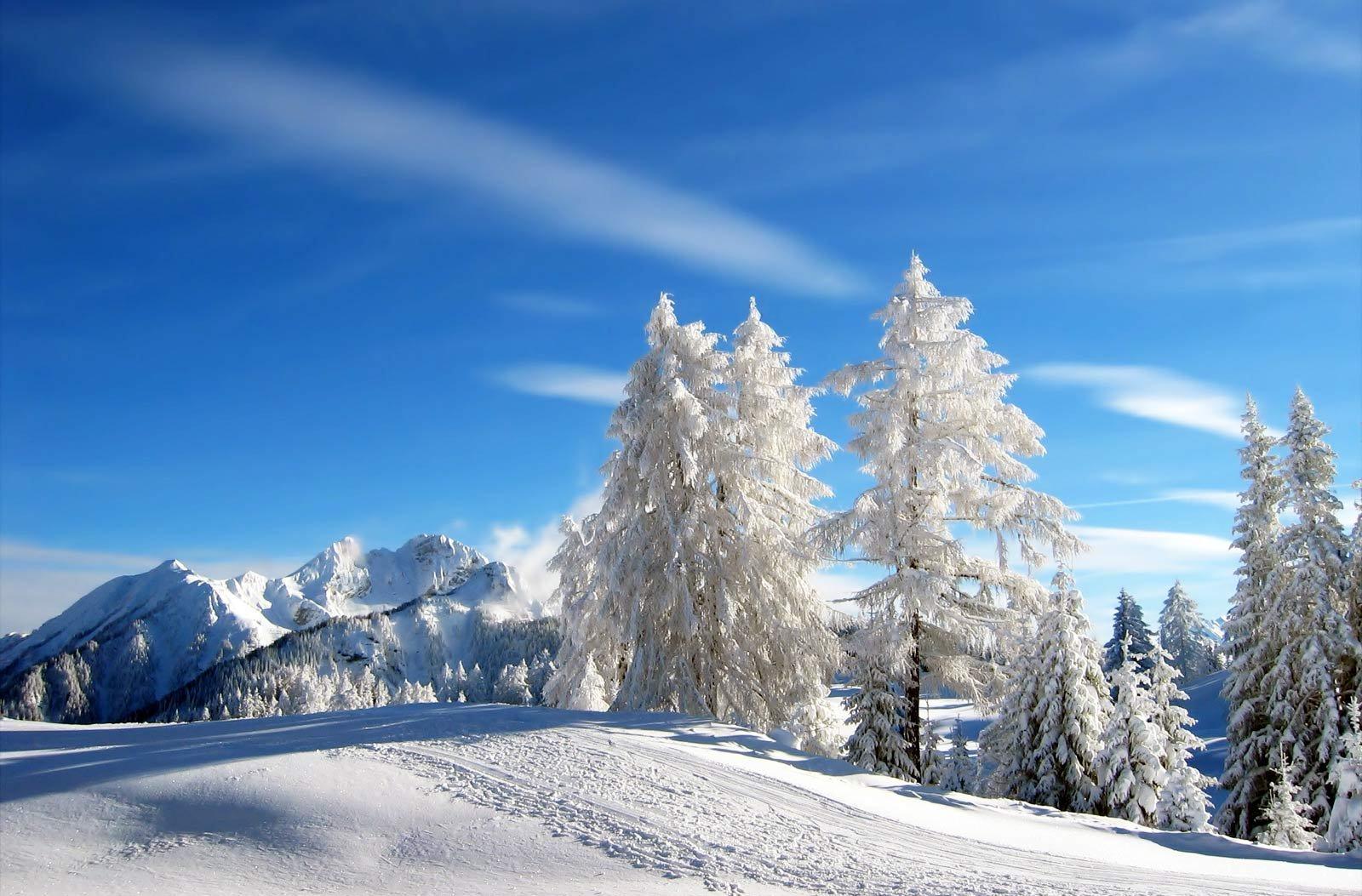Зимние открытки про природу, носки открытки