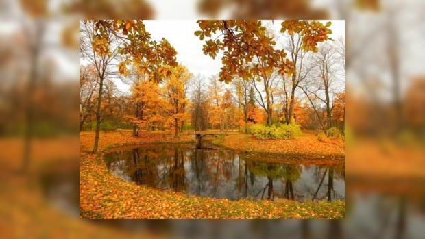 Погода от фобос в волгоградской области на месяц