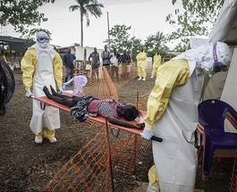 Лихорадка Эбола в Гвинее массово распространялась через народную целительницу