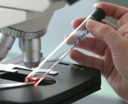 Лихорадка Эбола: ВОЗ готовит новую вакцину  из крови тех, кто уже переболел