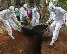 Лихорадка Эбола: ученые спрогнозировали около миллиона зараженных в 2015 году