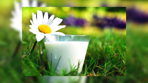 Батл Украина и ЕС: чье молоко достойно лежать на прилавках отечественных магазинов?