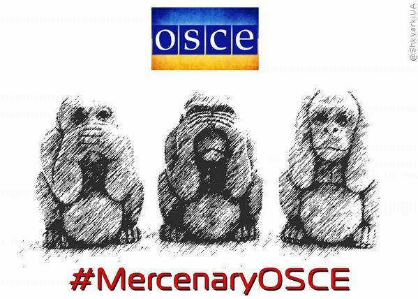 Процес відведення сил і засобів ЗСУ на Донбасі контролюватимуть представники СММ ОБСЄ, - командувач ОС Кравченко - Цензор.НЕТ 9639