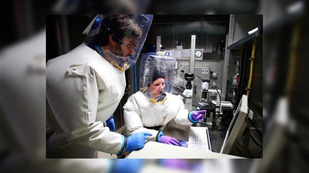 Лихорадка Эбола: лидеры G20 договорились остановить болезнь