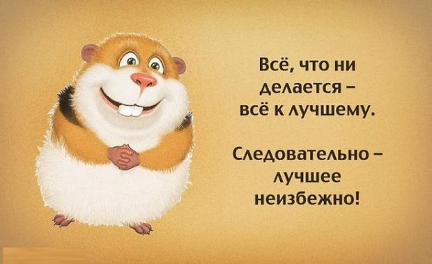Игорь Олейников  Картинки и разговоры