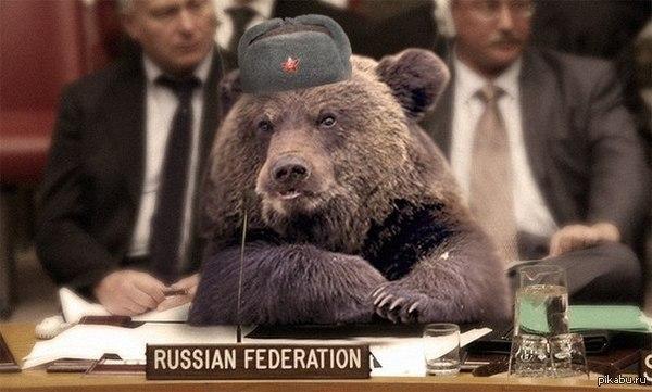 Украинские дипломаты работают над избранием страны в непостоянные члены Совбеза ООН, - МИД - Цензор.НЕТ 6691
