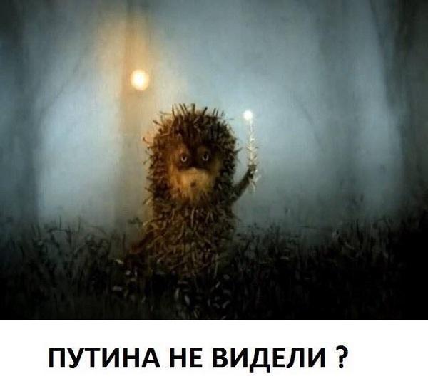 ГПУ открыла дело против прокурора Киева Юлдашева, - нардеп от БПП Куприй - Цензор.НЕТ 7443