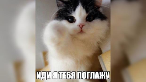 http://joinfo.ua/images/news/2015/04/552fc72b43bd8_5(99).jpg