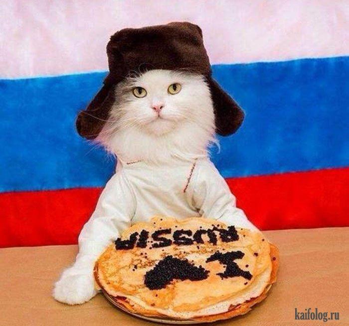 Смешные патриотические картинки россии, днем