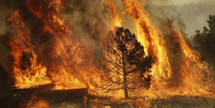25-метровый огненный столб приближается к крупному селу в Бурятии