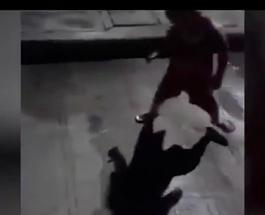 «Бой с тенью»: мальчик, с перепугу пытавшийся прогнать свою тень, стал хитом Интернета