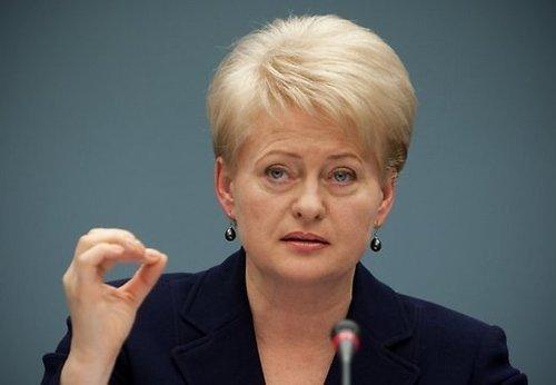 """""""Новый год - новые возможности"""", - Грибаускайте поздравила Украину и ЕС со вступлением в силу соглашения о ЗСТ - Цензор.НЕТ 9744"""