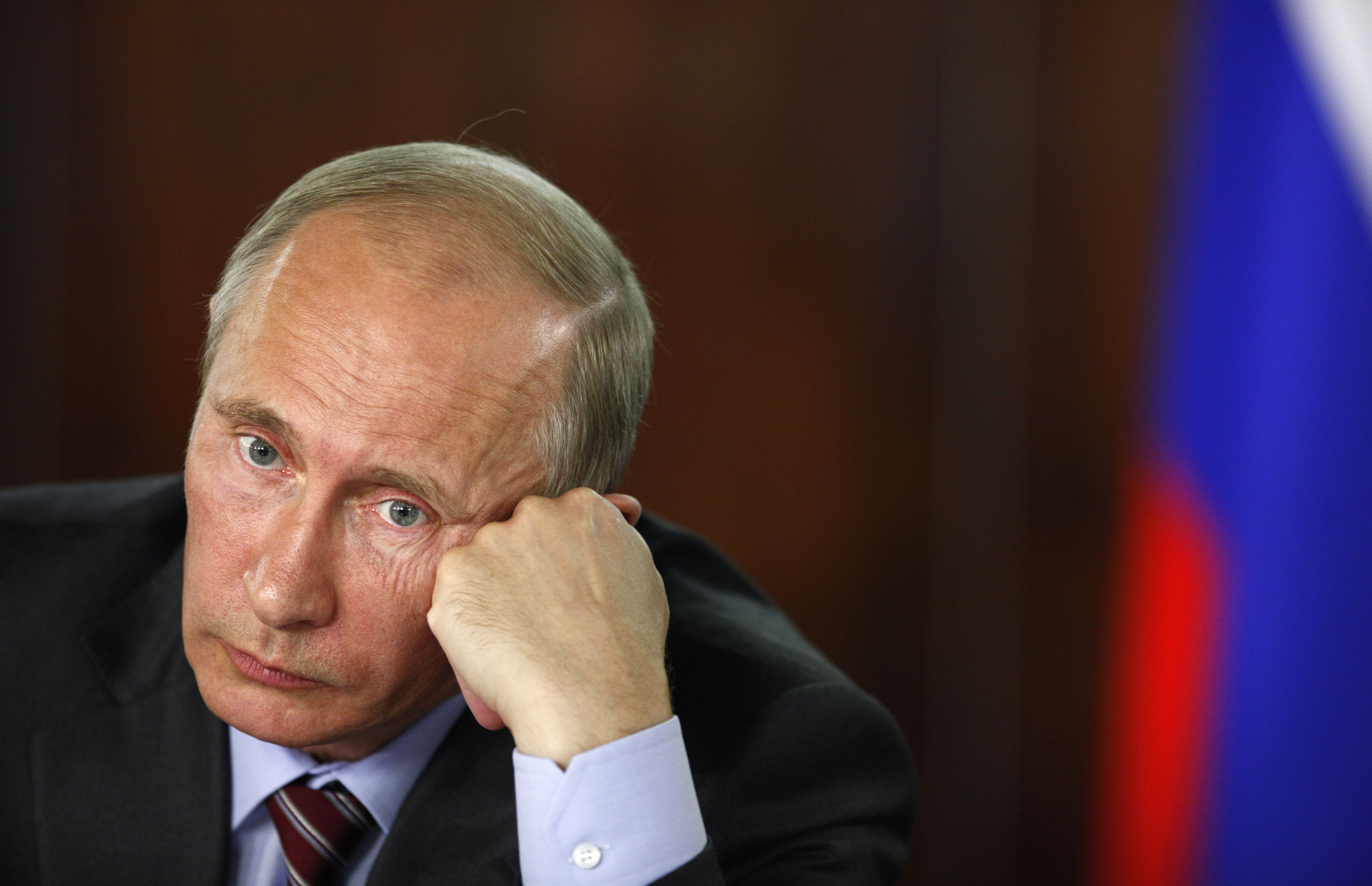wladimir putin dissertation Wladimir putin dissertation - why be concerned about the assignment get the needed guidance on the website use this service to get your sophisticated paper delivered on time get to know.