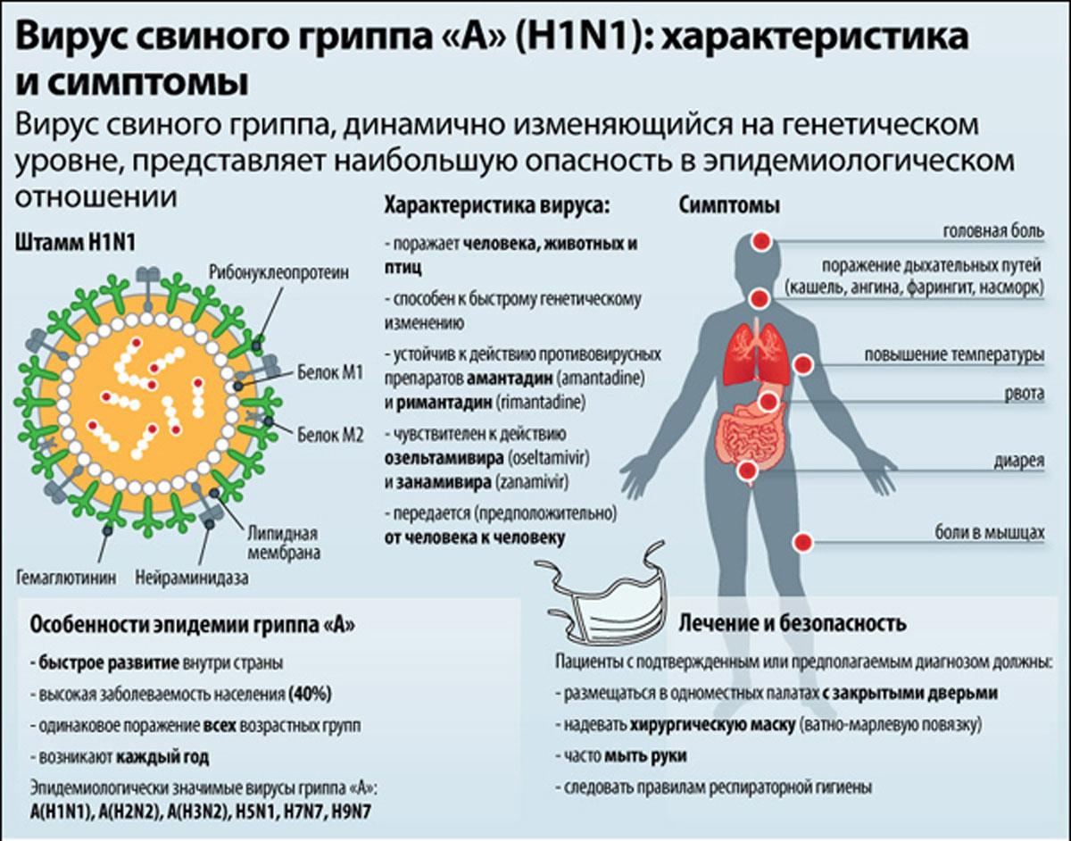 В Краматорске введен карантин: в городе зафиксировано уже 15 смертей от неизвестного штамма гриппа