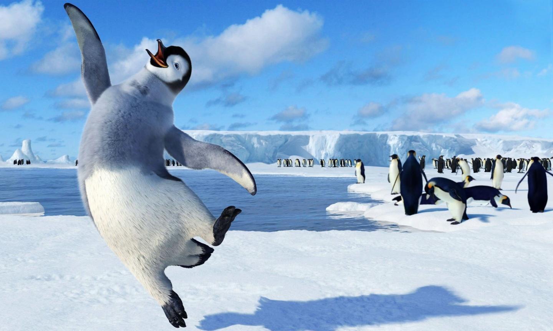 Картинки прикольные, прикольная картинка пингвины