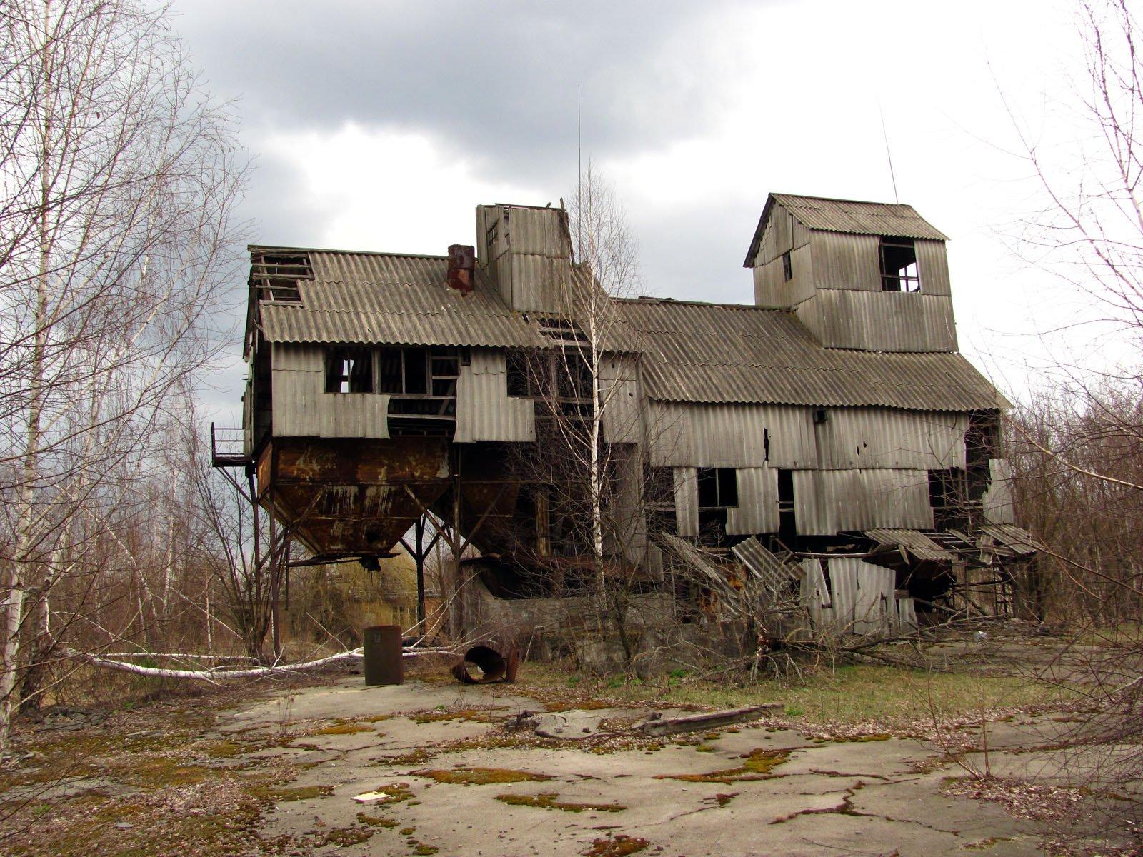 Минэкологии ждет создания Чернобыльского биосферного заповедника в2016